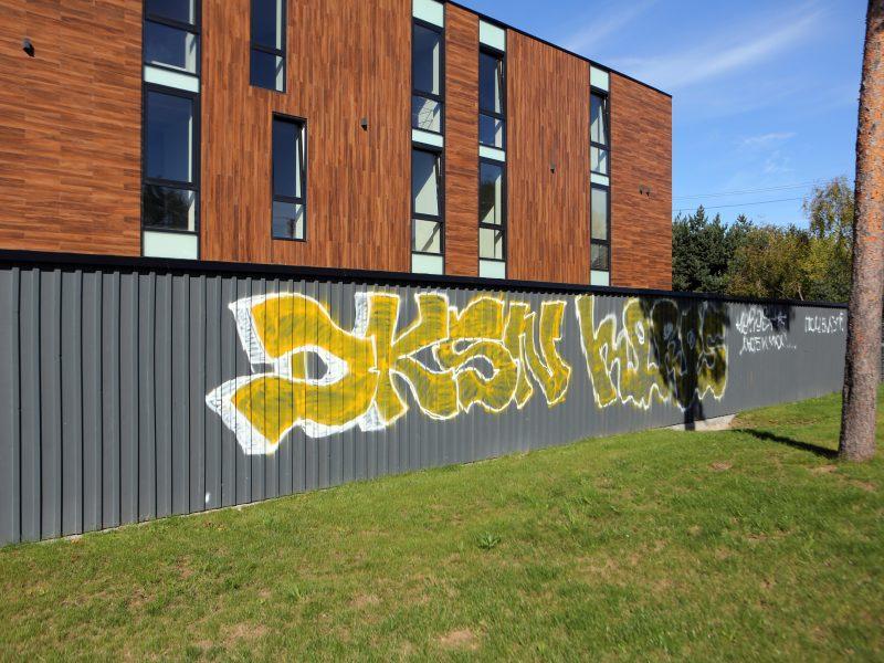 Grafitininkai patys šveitė terlionę
