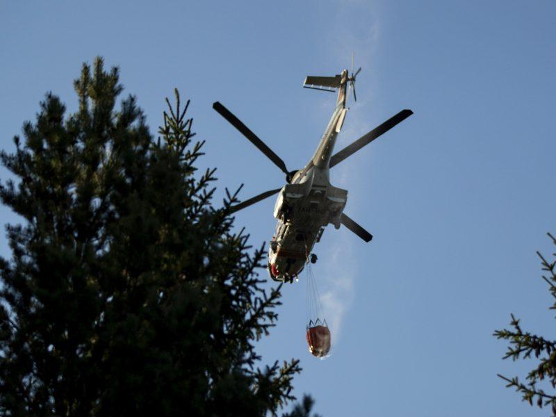 Miškų gaisrai Latvijoje suniokojo 800 hektarų žemės