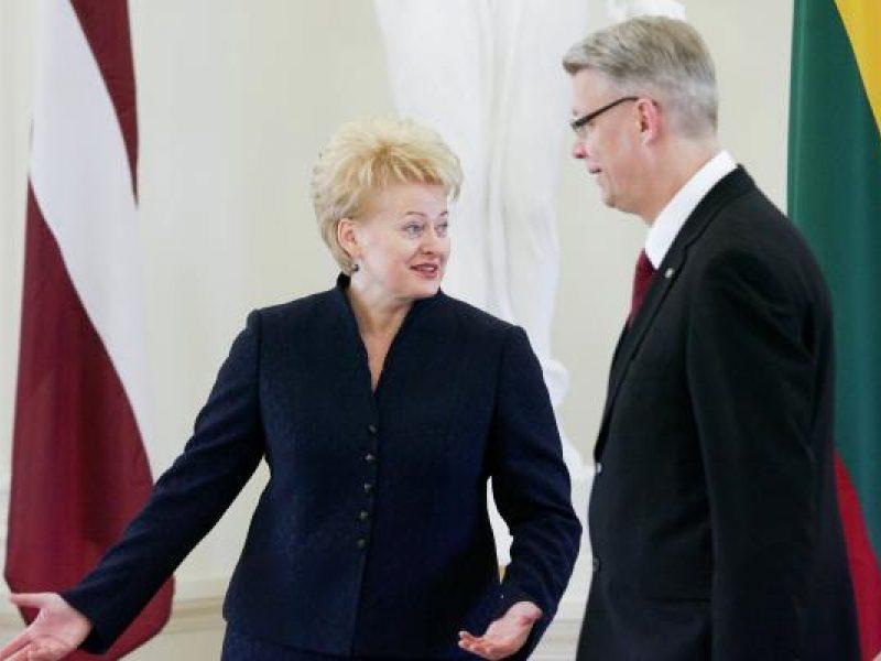 D.Grybauskaitė: suskystintų dujų terminalų projektai neprieštarauja vienas kitam