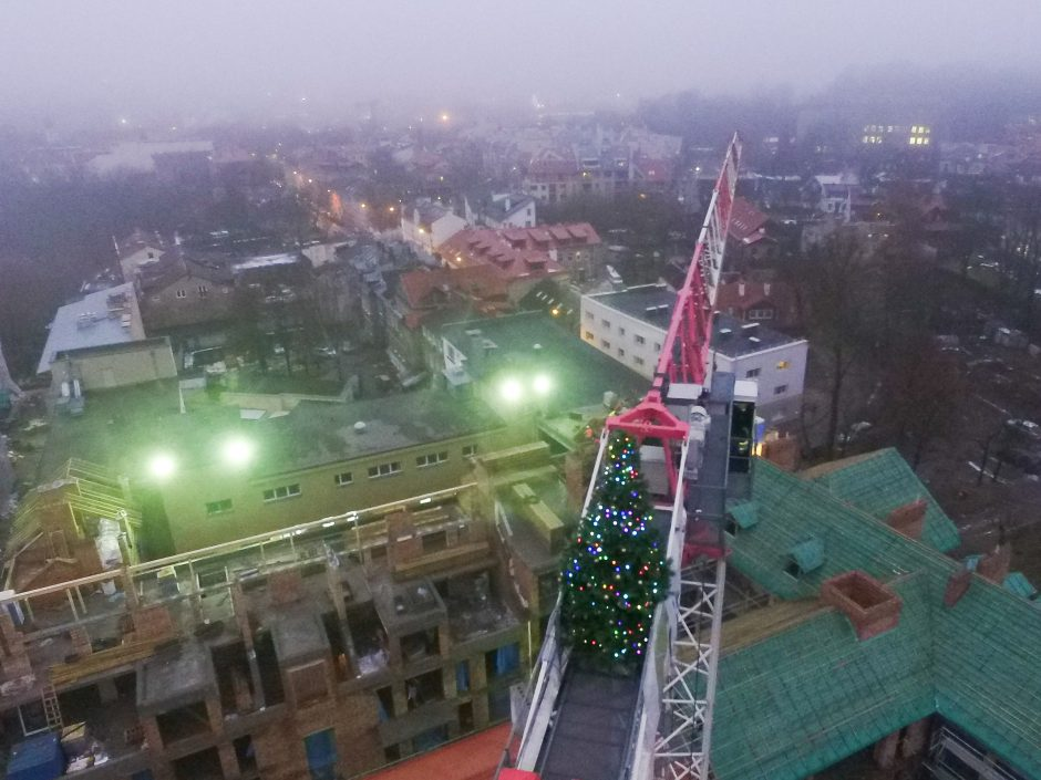 Vilniečius nustebino padangėje sužibusios kalėdinės eglutės