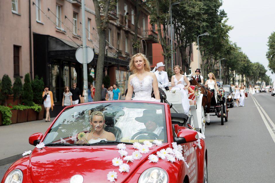 Klaipėdos nuotakų paradas – atkirtis homoseksualams