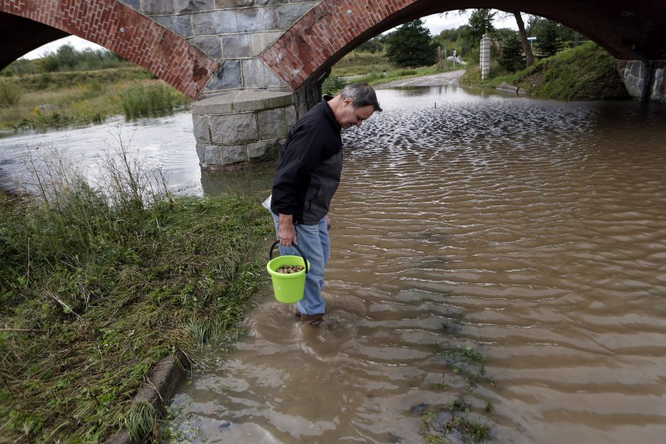 Patvinęs Smeltalės upelis