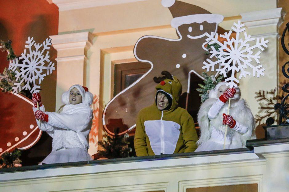Klaipėdoje nušvito natūrali Kalėdų eglė (vaizdo įrašas)
