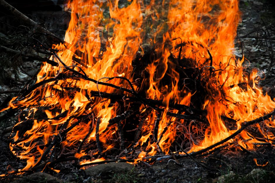 Ar besitvarkant aplinką leidžiama deginti augalines atliekas?