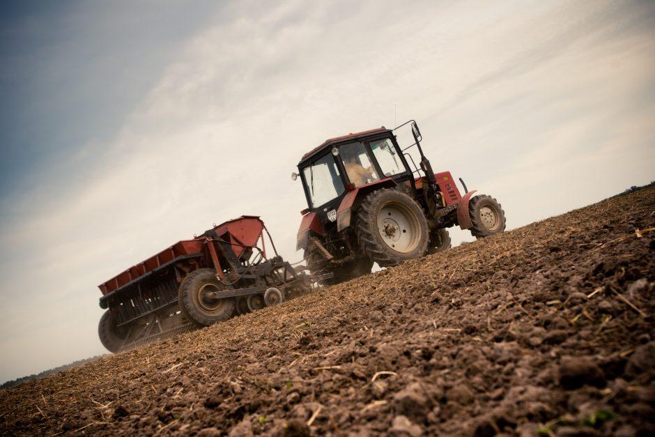 Seimas nesutiko dukart sumažinti žemės mokesčio