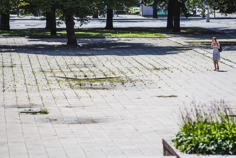 Skirta 3 mln. litų, o miesto centras vis tiek apžėlęs