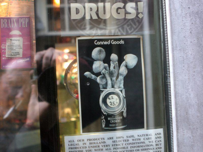 """Haliucinogeniniai grybai guldo į reanimaciją: """"nuneša"""" ir smegenis, ir kepenis"""