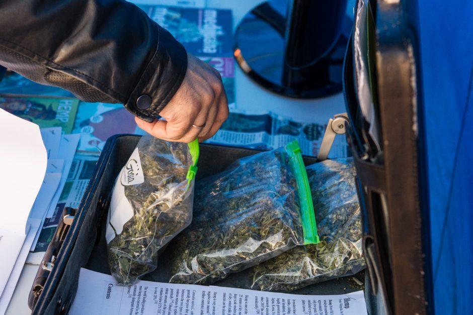Istorinis sprendimas: Seimas įteisino vaistus su kanapėmis