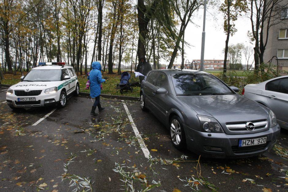 Vėtra uostamiestyje: niokojami automobiliai, į uostą neįplaukia laivai