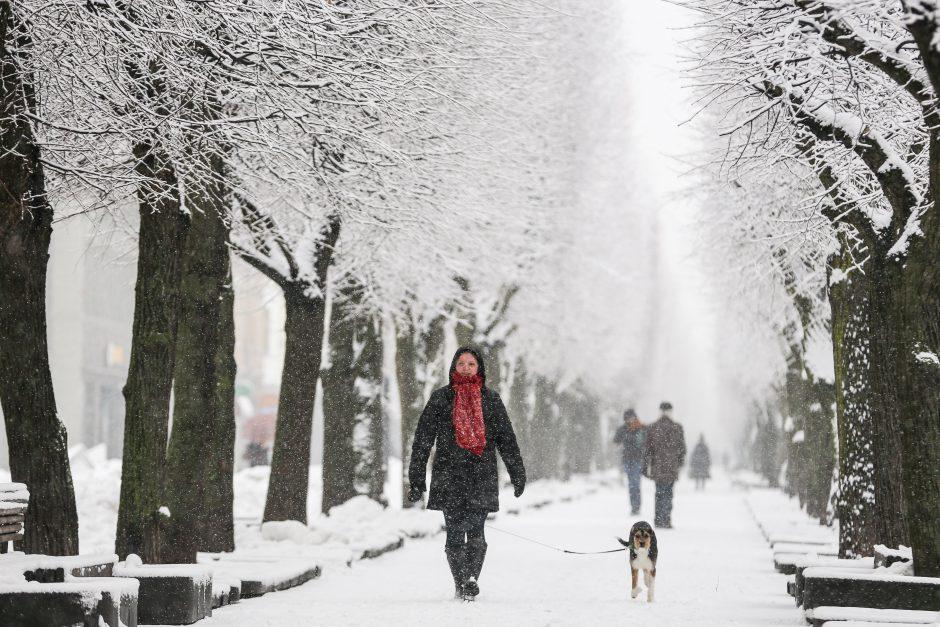 Žiema į Vilnių įsiverš su stipriu vėju ir sniegu