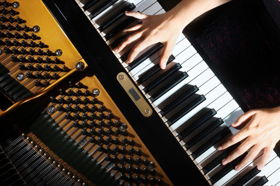 Muzikos studijų Hamburge slaptažodis – teorinės žinios