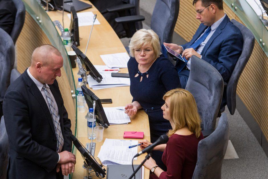 Seime – valstybės biudžeto svarstymas