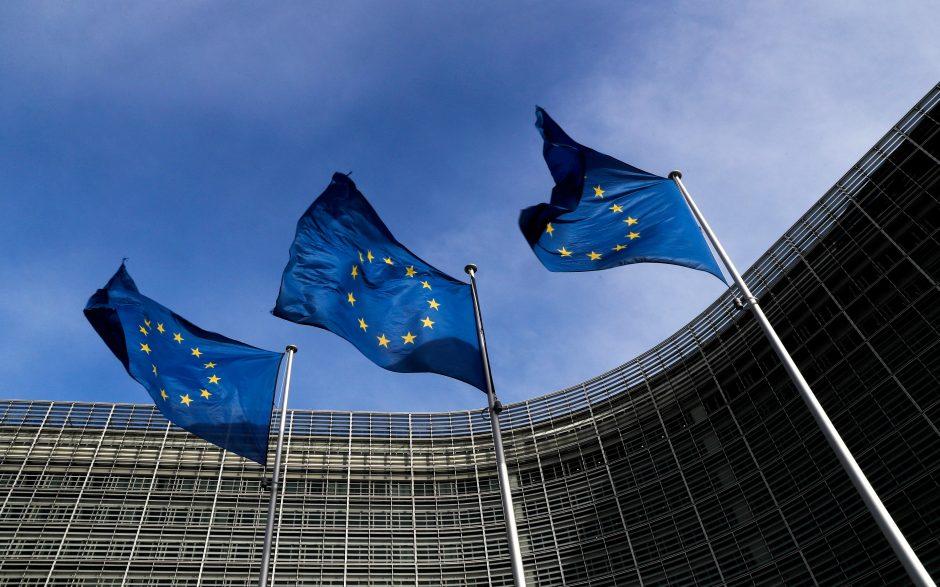 Prieš rinkimus ES aktyviau kovos su melagingomis naujienomis