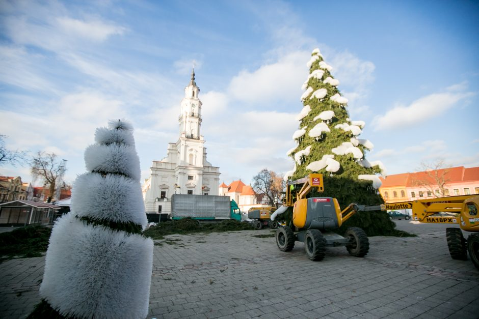 Kurti Kauno Kalėdų eglę padėjo ir savanoriai