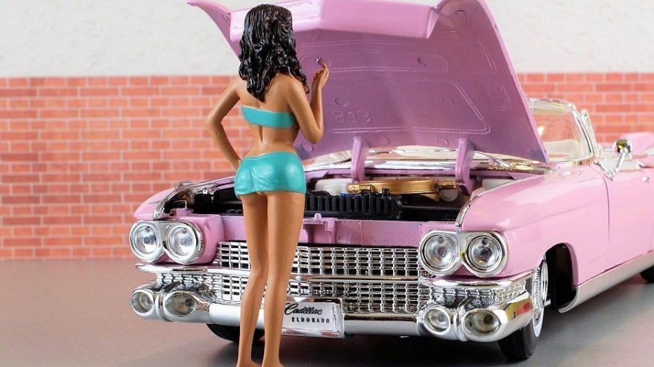 Policija išgelbėjo su manekenu ir žaisliniu automobiliu susipainiojusius vyrus