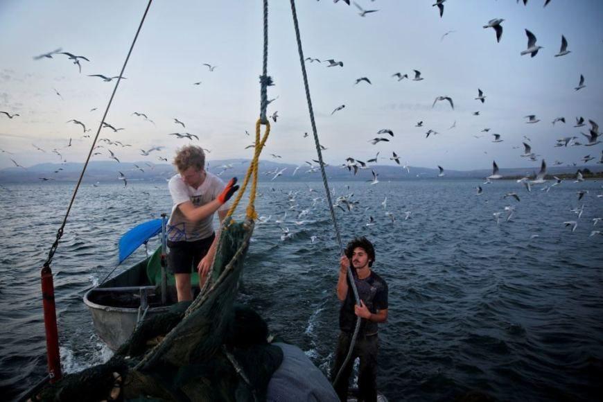 Galilėjos jūroje vandens lygis šiuo metu yra žemiausias per 100 metų