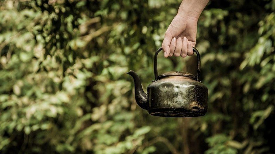 Žolininkė: termose plikytos arbatžolės gali tapti nuodingos