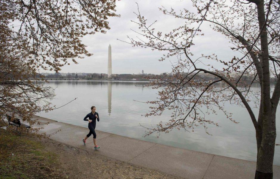 Vašingtone dėl šalčio atidėta vyšnių žydėjimo šventė