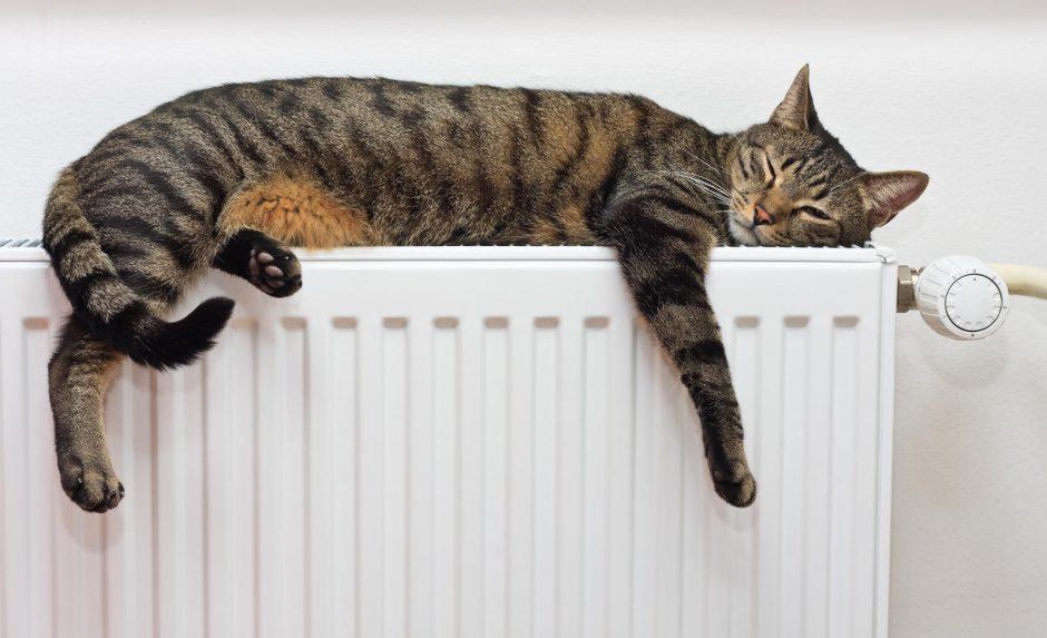 Nuo rytojaus Vilniuje įjungiamas šildymas