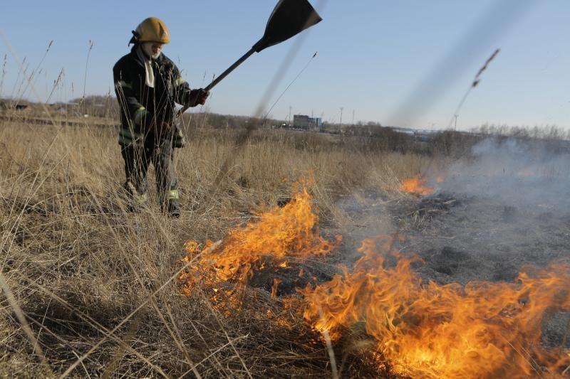 Kauno ugniagesiams jau kasdien tenka gesinti degančią žolę