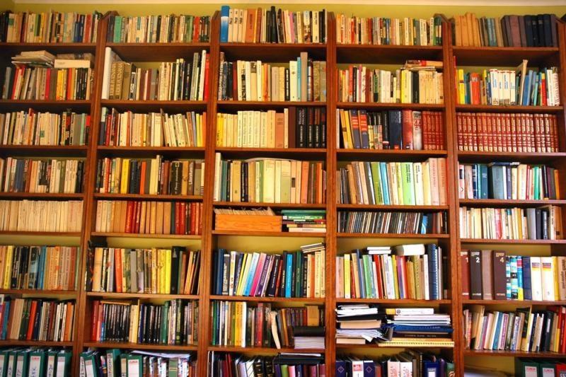 Knygų žiurkės                    kampelis