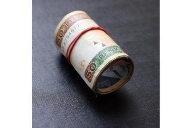Krizė moko vengti skolų