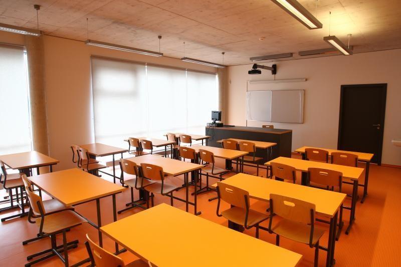 Tautinių mažumų problemos sprendžiamos lietuviškų mokyklų sąskaita