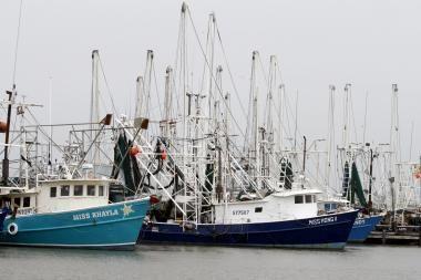 Naftos dėmė Meksikos įlankoje paliko žvejus be pragyvenimo šaltinio