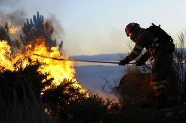 Ispanijoje malšindami miško gaisrą žuvo du ugniagesiai