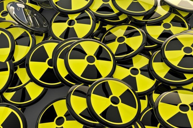 Ambasadorius Minske: Astrave gali atsirasti ne atominė, bet karpių augykla