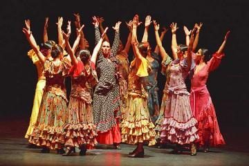 Flamenko šokių ir gitaros pamokos