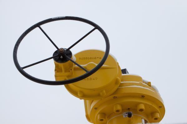 ES patikrinimai dujų įmonėse atlikti dėl Lietuvos skundo