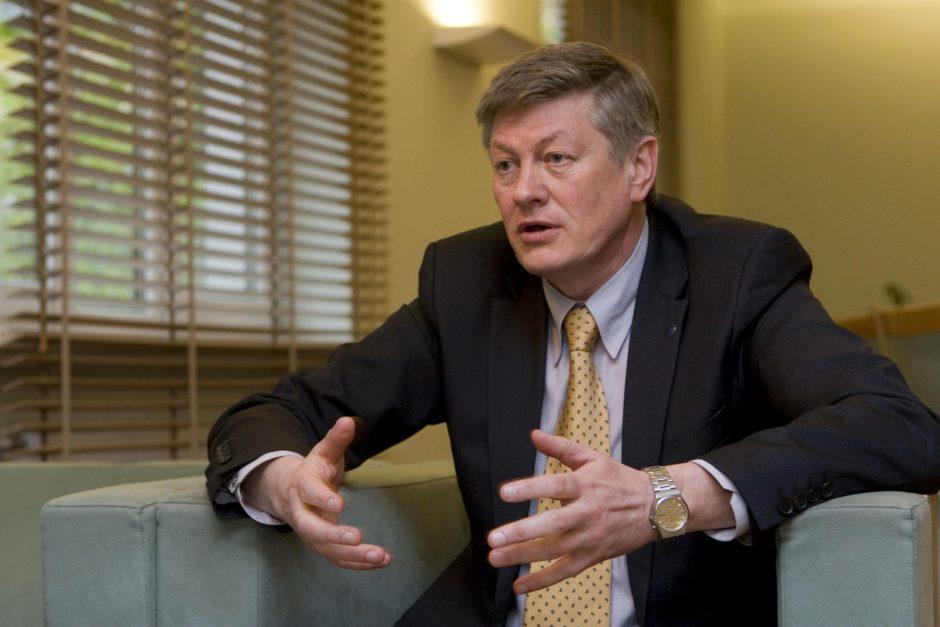 A. Paulauskas siūlo nelegalias statybas griauti be teismo sprendimo