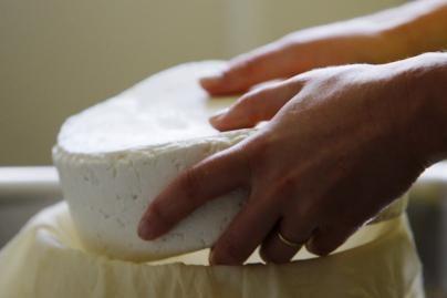 Sūrio etiketėse bus daugiau informacijos