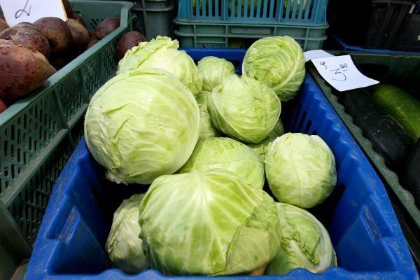 Daržovių augintojai džiaugiasi derliumi, pirkėjai – kainomis
