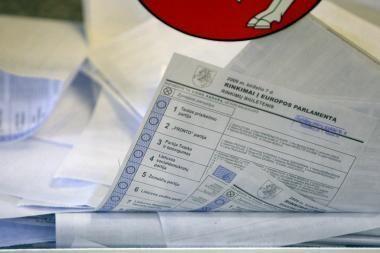 Seime tebesklando tiesioginių merų rinkimų idėja