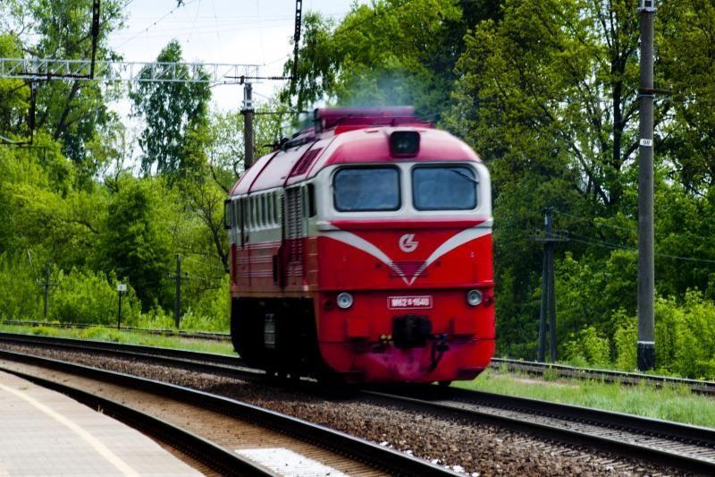 Lenkijoje parai sustojo tūkstančiai traukinių