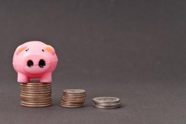 Verslas turėtų didinti investicijas, toliau vengti išlaidavimo
