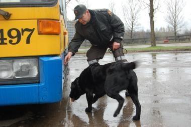 Lietuvos šunys – pripažinti narkotikų ieškotojai