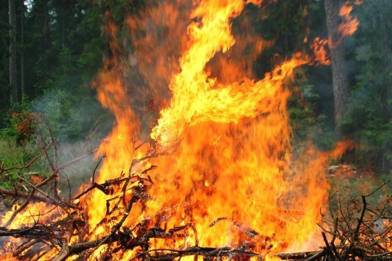 Klaipėdoje per gaisrą pašiūrėje žuvo žmogus