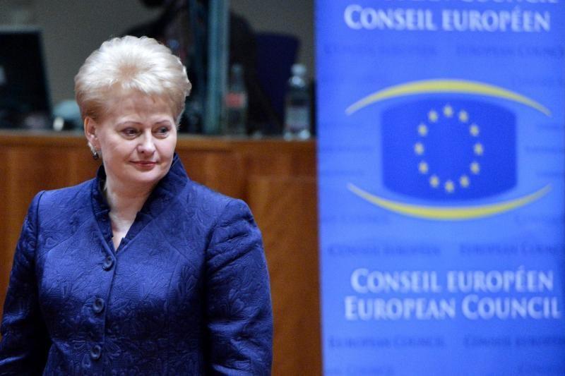 D. Grybauskaitė: ES vėluoja įgyvendinti ekonomikos skatinimo priemones