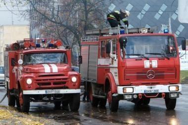 Per parą gaisruose žuvo vienas žmogus