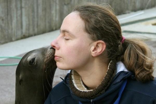 Klaipėdoje delfinės pienas išgelbėjo Kalifornijos jūrų liūtukę