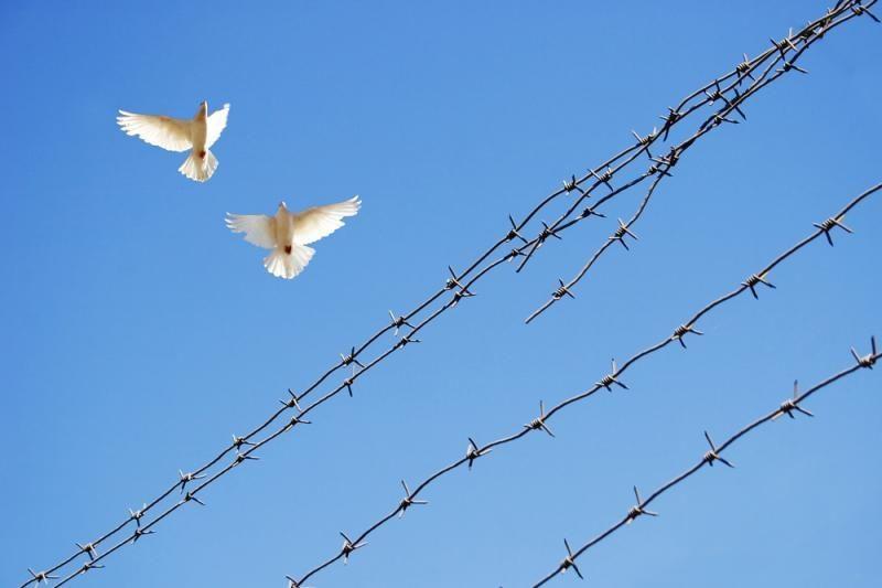Žiaurios gaujos vadeiva L.Lapinskas veržiasi į laisvę