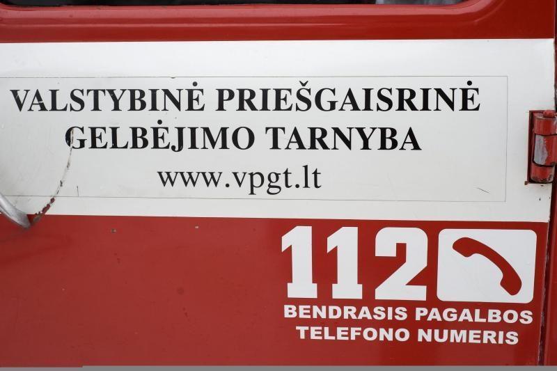 Vilniaus miške rastas            sprogmuo