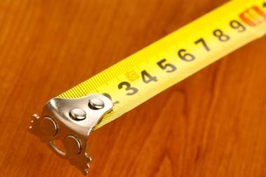 Lygių galimybių kontrolierė kritikuoja ūgio apribojimus priimant į statutinę tarybą