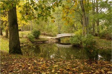 Ši savaitė Lietuvoje išliks rudeniška