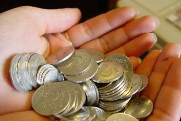 Vienam kauniečiui - 6 tūkst. litų užsienio investicijų