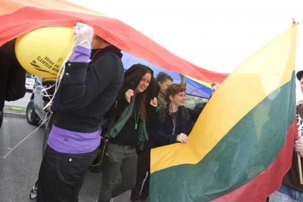 Vytauto Didžiojo universitetui - dar viena byla dėl homofobijos