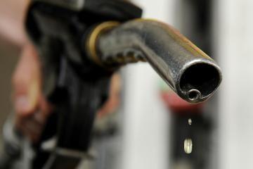 I.Paleičikas: benzinas kainuos 5 litus